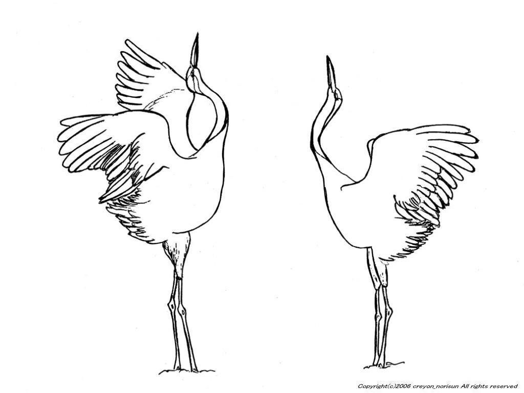 イラスト イラスト ぬりえ : 鶴の下絵~鶴亀のぬりえ
